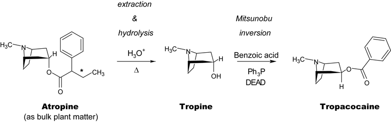 Acid hydrolysis of bulk plant matter yields tropine, which may be converted in one step to Tropacocaine via Mitsunobu inversion at the C3 alcohol.