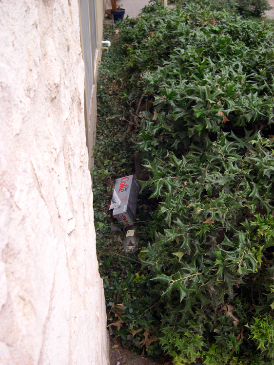 Litter accumulates irreversibly in the space between the building and the ouchie bushes.